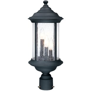 Devizes 3-Light Outdoor Lantern Head By Charlton Home Outdoor Lighting