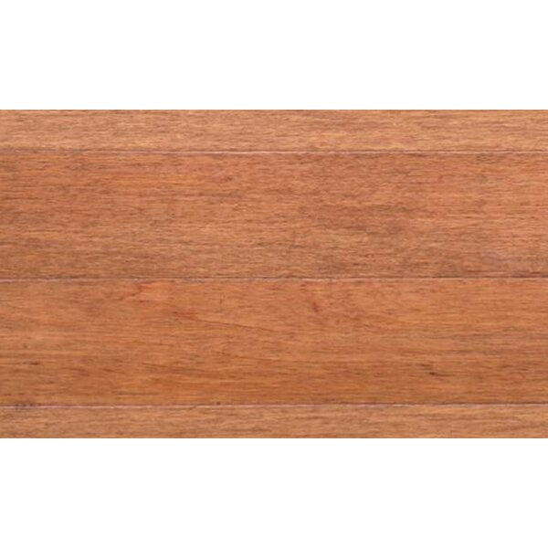 Dolce 6-1/4 Engineered Pecan Hardwood Flooring in Brown by IndusParquet