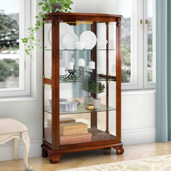 Nancy Lighted Curio Cabinet by Darby Home Co