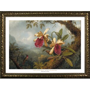 Museum Masters 'Orchids and Hummingbirds' by Martin Johnson Heade Framed Painting Print by Buy Art For Less
