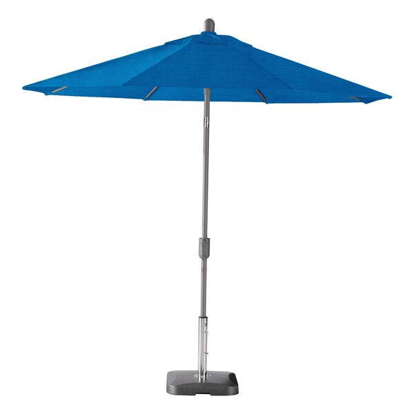 Wiechmann 9' Market Sunbrella Umbrella by Breakwater Bay