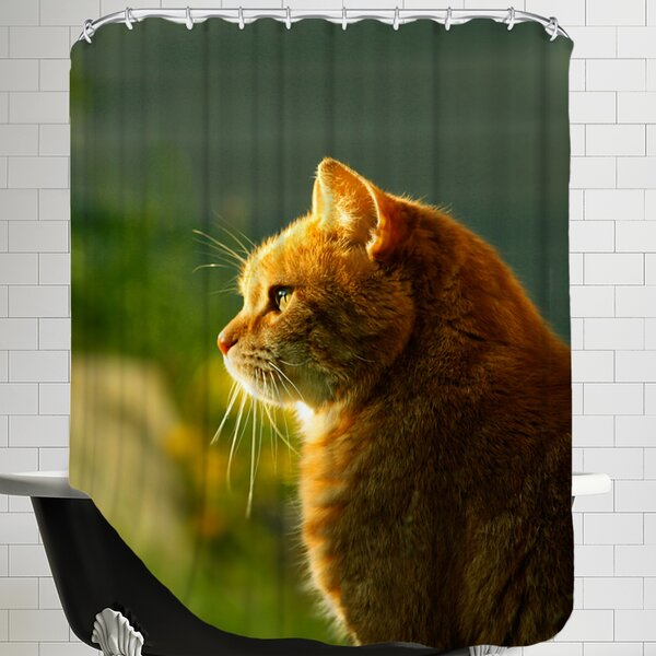 Wonderful Cat with Sun Shower Curtain by East Urban Home