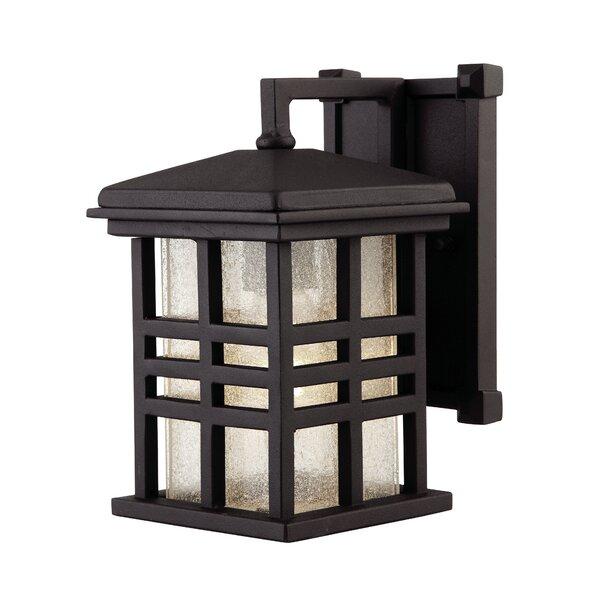 Arlington 1-Light Outdoor Wall Lantern by Canarm