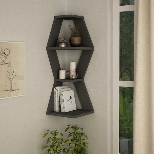 Myer Wall Shelf by Latitude Run