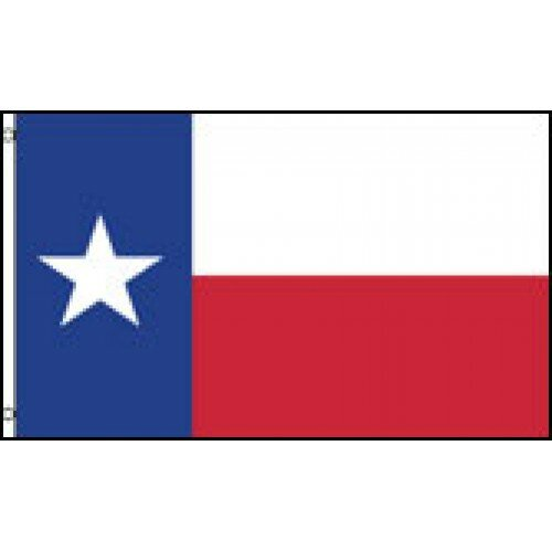Texas State Traditional Flag by NeoPlex