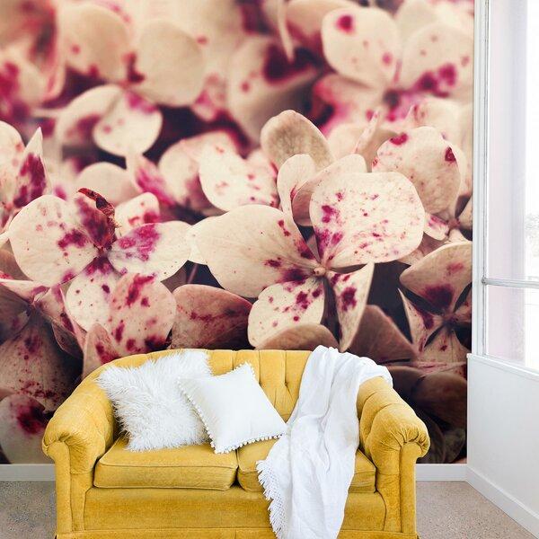 Ingrid Beddoes Hydrangea Freckels Wall Mural by East Urban Home
