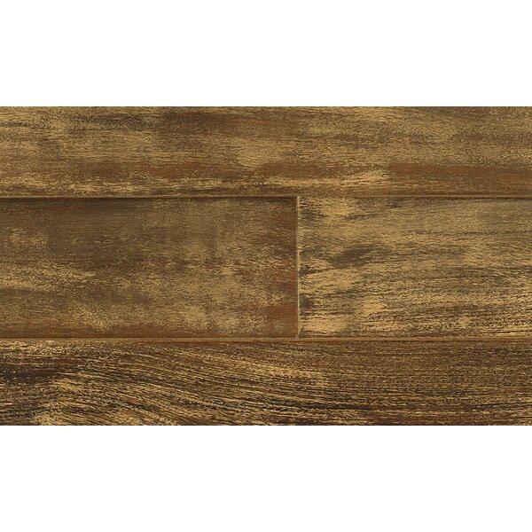 Coterie 5-1/2 Engineered Chestnut Hardwood Flooring in Brown by IndusParquet