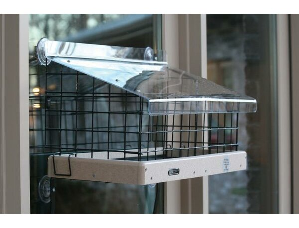 Recycled Large Window Suet Bird Feeder by Birds Ch
