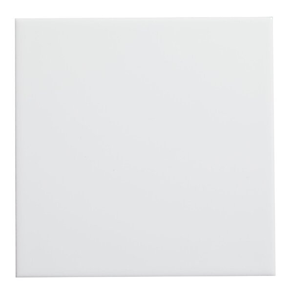Value 6 x 6 Ceramic Tile in White by WS Tiles