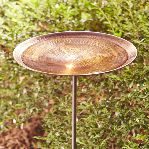 Antique Copper Birdbath by Birch Lane™