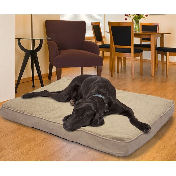 Arocho Terry and Suede Memory Foam Dog Bed by Tuck