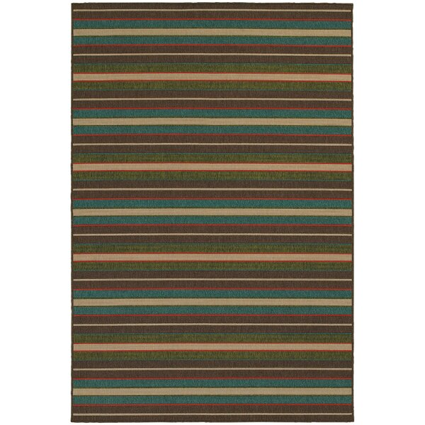 Seaside Teal Blue/Brown Indoor/Outdoor Area Rug by Tommy Bahama Home