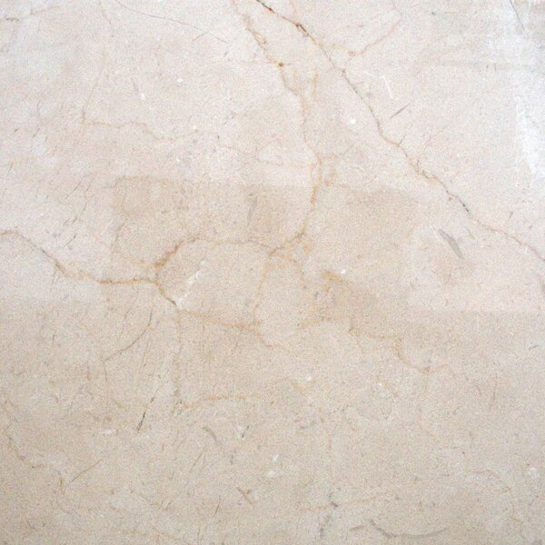 Marfil 18'' x 18'' Marble Field Tile in Crema by MSI