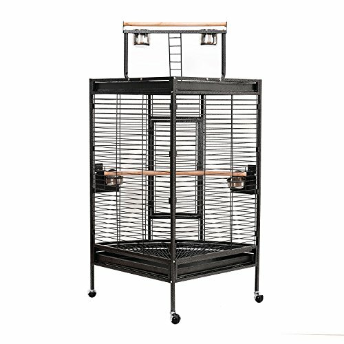Flournoy Corner Playtop Bird Cage with Casters by Tucker Murphy Pet