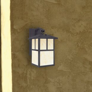 Check Prices Nova Scotia 1-Light Outdoor Wall Lantern By Westinghouse Lighting