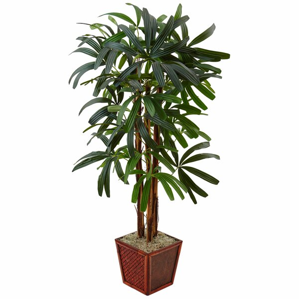 Artificial Raphis Floor Palm Tree in Planter by Bloomsbury Market