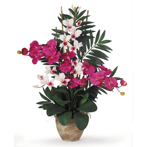 Double Phalaenopsis and Dendrobium Silk Orchid with Vase by Nearly Natural