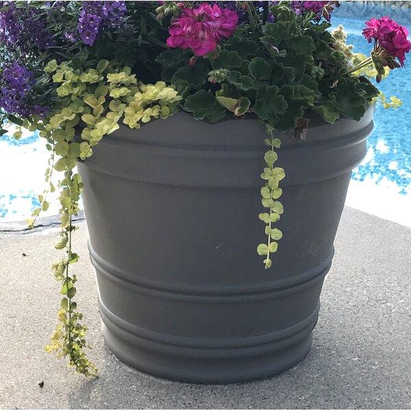 Feller Plastic/Resin Pot Planter by Charlton Home