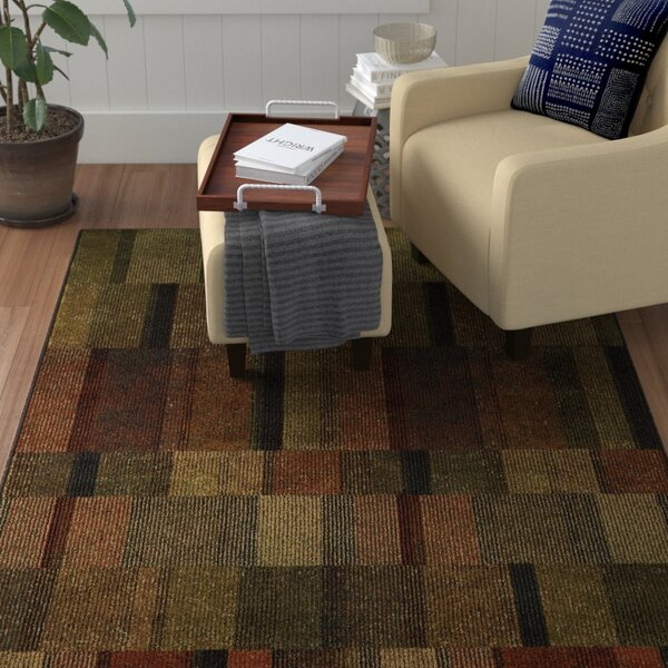 Schaeffer Brown/Green Area Rug by Red Barrel Studio
