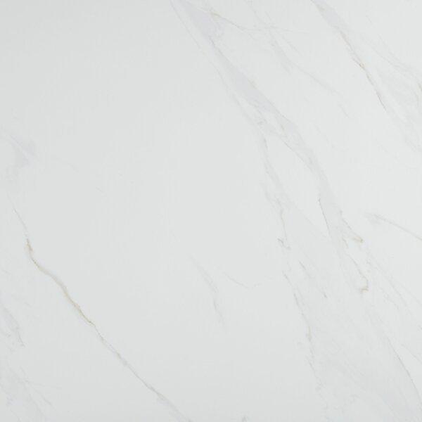 Florentine 24 x 24 Porcelain Field Tile in Carrara by Daltile