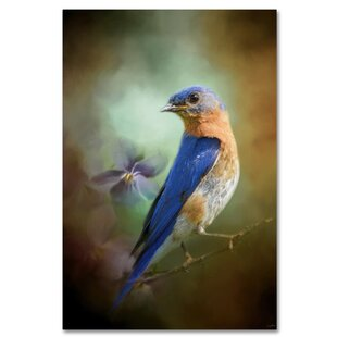 1a0fabcc1b8  Portrait of a Bluebird  Graphic Art Print on Wrapped Canvas