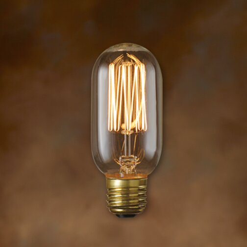 Nostalgic 40W Incandescent Light Bulb (Set of 5) by Bulbrite Industries