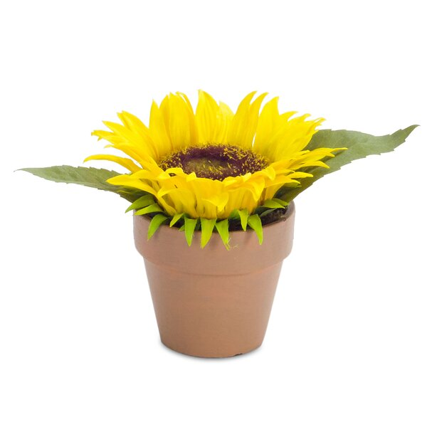 Sunflower Floral Arrangement in Pot (Set of 4) by August Grove