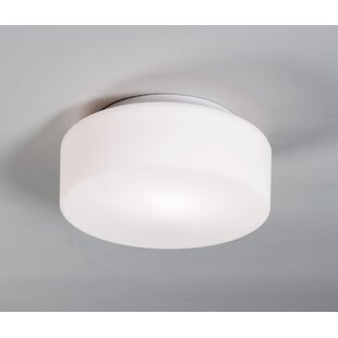 Battery powered ceiling light wayfair tango ceiling fixture wall sconce mozeypictures Images