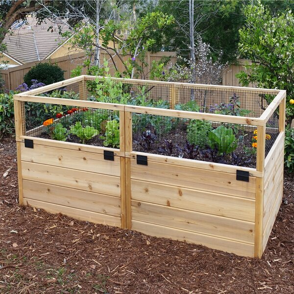 6 ft X 3 ft Raised Cedar Garden Bed with Trellis Lid Kit by Outdoor Living Today