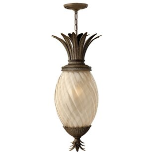Compare & Buy Terry 1-Light Outdoor Hanging Pendant By Beachcrest Home