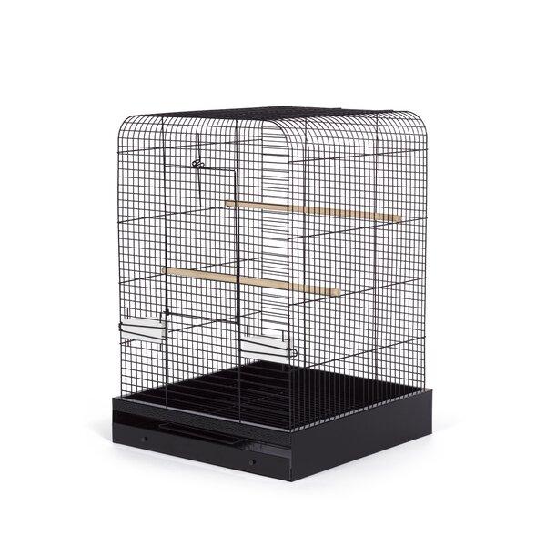 Elian Bird Cage by Archie & Oscar