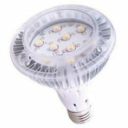 60W Halogen Equivalent Light Bulb by Lumensource LLC