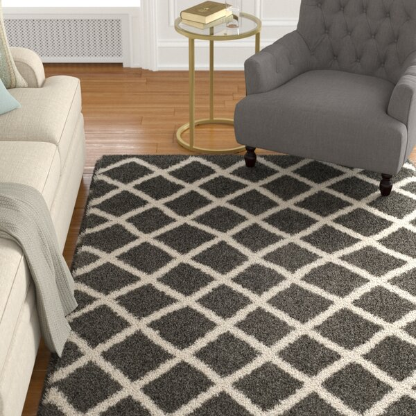 Laurelville Shag Dark Gray/Ivory Area Rug by Alcott Hill