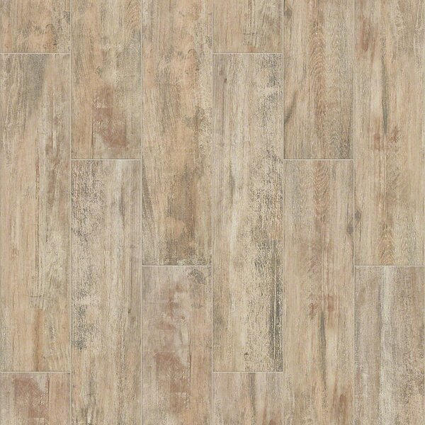 Celestial Plank 8 x 36 Ceramic Field Tile in Natural by Shaw Floors