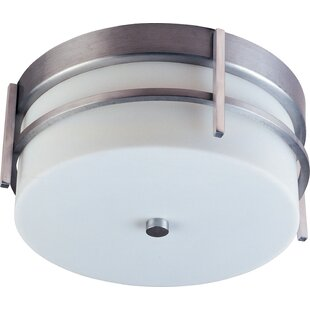 Searching for Cannella 2-Light Metal Outdoor Flush Mount By Orren Ellis