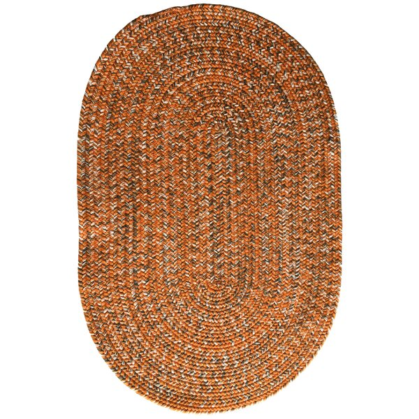 One-of-a-Kind Aukerman Hand-Braided Orange/Gray Indoor/Outdoor Area Rug by Isabelline