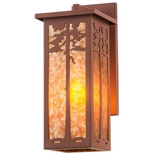 Online Reviews 1-Light Outdoor Wall Lantern By Meyda Tiffany