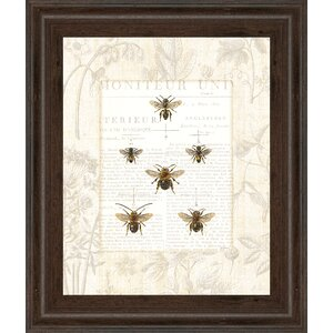 Bee Botanicals by Sue Schlabach Framed Graphic Art by Classy Art Wholesalers