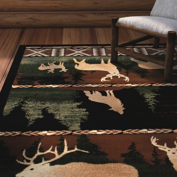 Iberide High-Quality Woven Ultra-Soft Southwest Wilderness Dawn Theme Green Area Rug by Loon Peak