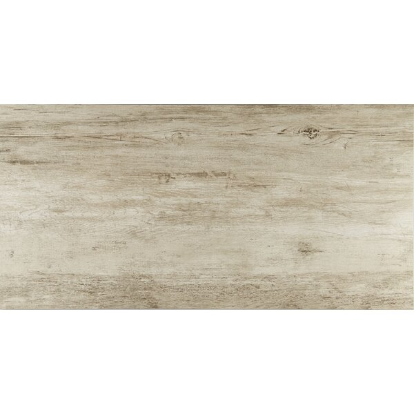 Season Wood 24 x 48 Porcelain Wood Look Tile in Winter Spruce by Daltile