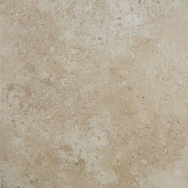 Remington 18 x 18 Ceramic Tile in Willow Branch by Itona Tile