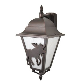 Best Choices Penfield 3-Light Outdoor Wall Lantern By Alcott Hill