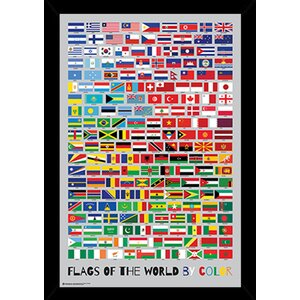 'Flags of the World by Color' Framed Graphic Art by Frame USA
