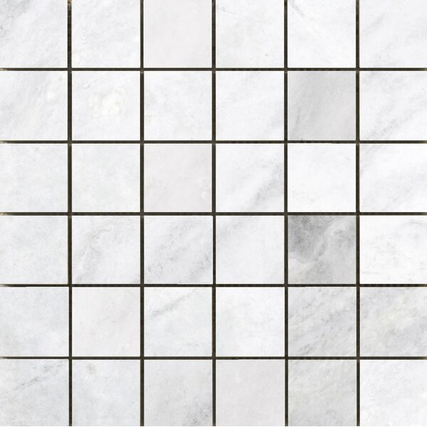 Kalta 2 x 2 Marble Mosaic Tile in Bianco by Emser Tile