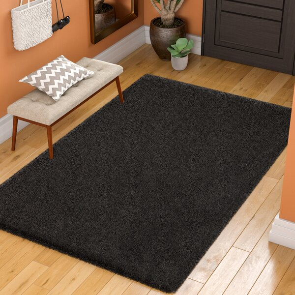 Starr Hill Solid Black Area Rug by Zipcode Design