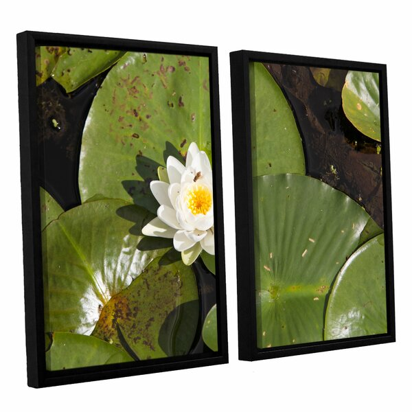 Lily Pad by Cody York 2 Piece Framed Photographic Print on Canvas Set by ArtWall
