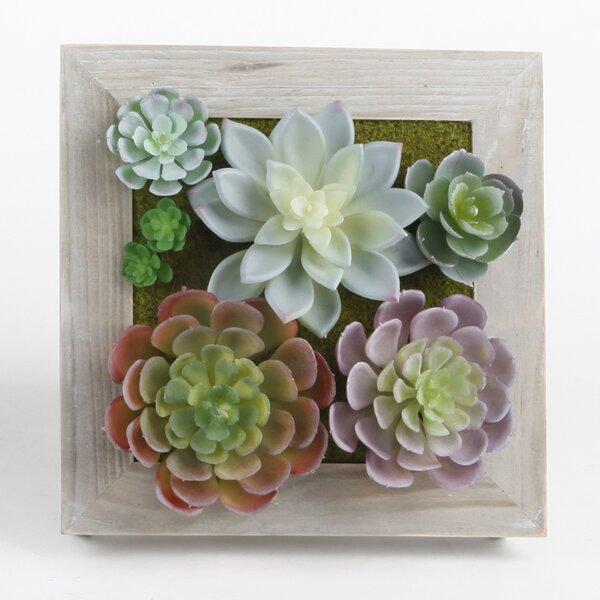 Square Picture Frame Desktop Succulent Plant by Bungalow Rose