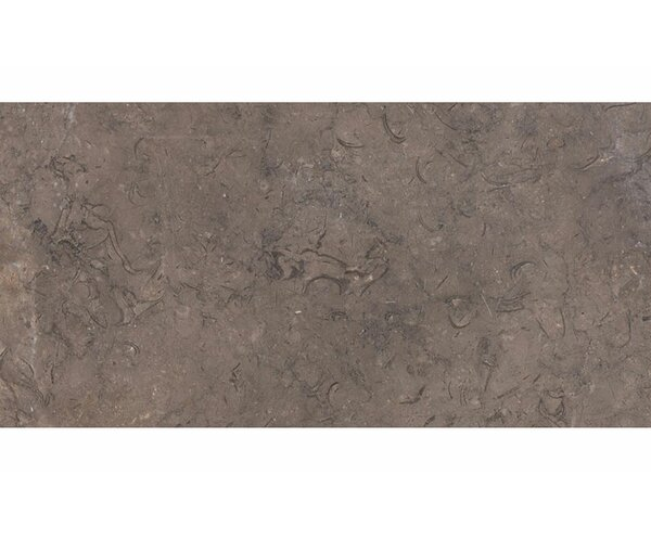 12 x 24 Stone Field Tile in Brown by Parvatile