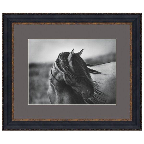 Fierce Grace Wild Stallion Horse by Tony Stromberg Framed Photographic Print by Design Toscano