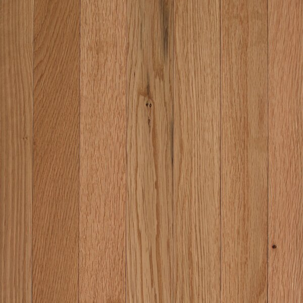 Barletta 2-1/4 Solid Oak Hardwood Flooring in White Natural by Mohawk Flooring